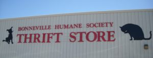 (AmE) humane society & thrift store