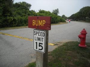 (AmE) bump